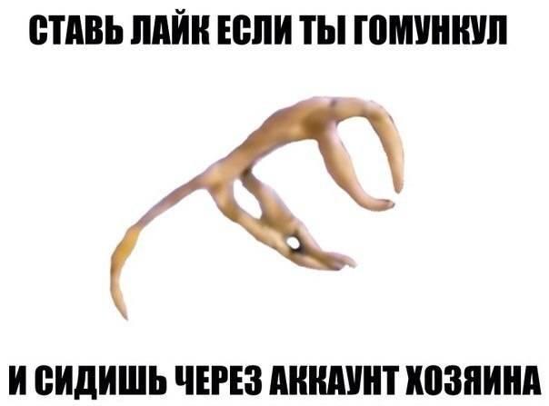 Гомункул