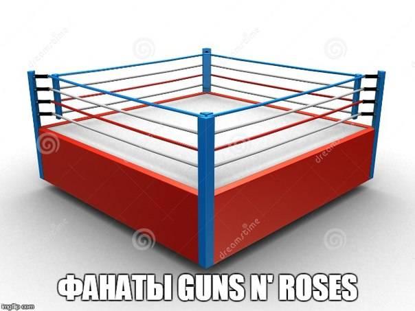 Фанаты guns n roses