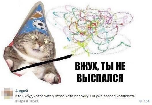Кот-волшебник / Вжух