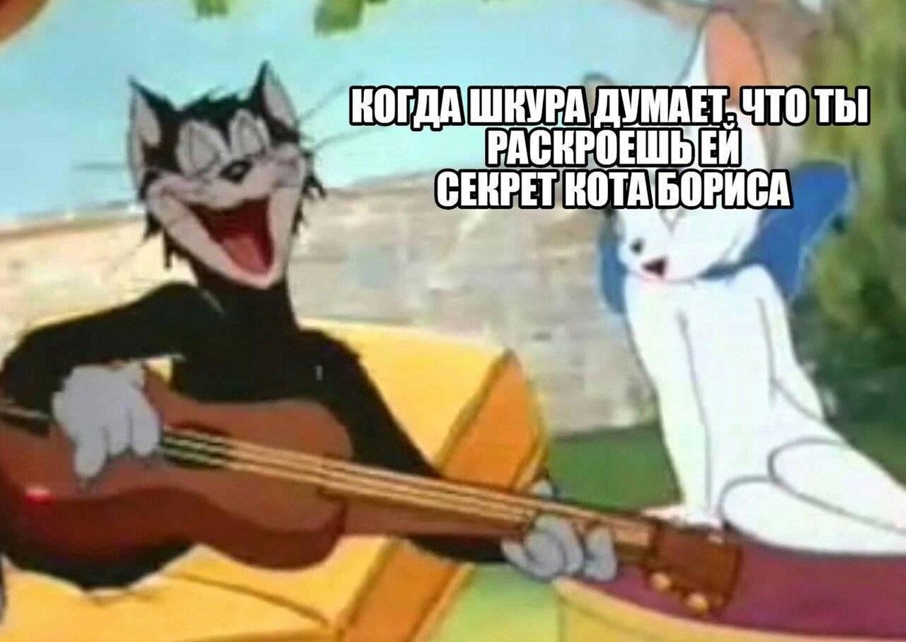 Мем кот борис
